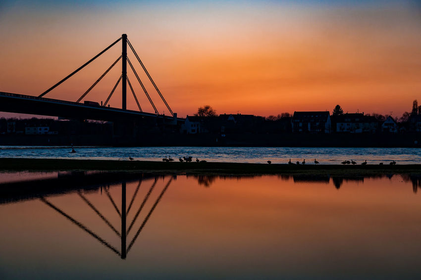 #meadows03 Rhein Ruhrgebiet Silhouette Architecture Beauty In Nature Birds Bridge - Man Made Structure Building Exterior Built Structure City Cityscape Connection Day Nature No People Orange Color Outdoors Reflection River Scenics Sky Sunset Water Waterfront Colour Your Horizn