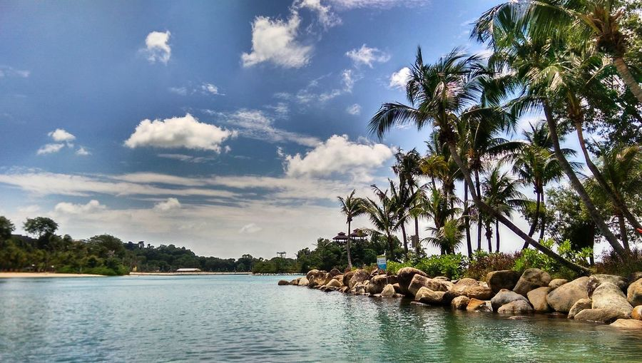 Exploring Sentosa Island we came upon Palawan beach. It is a beautiful place to relax and swim! Singapore Sentosa Island Palawan Beach Sand Palm Trees Blue Sky Clouds Ocean Water ASIA Nature