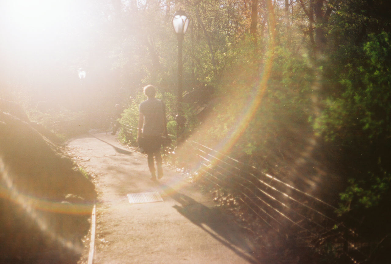 Person walking in park with lens flare