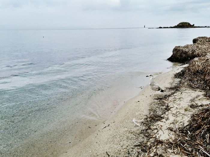 Provence Les Salins Saint Tropez Beach Sea