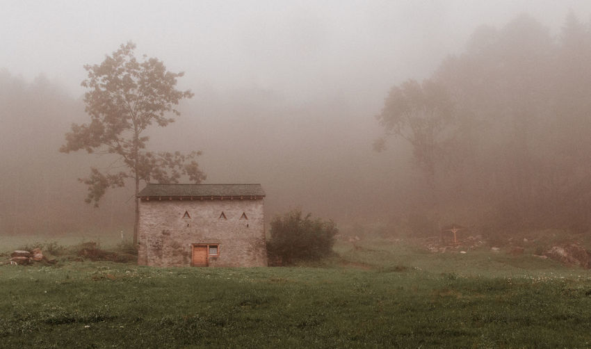 Home Abandoned Buildings Beauty In Nature Day Field Fog Foggy Day Foggy Landscape Grass Landscape Mist Nature No People Outdoors Tranquility Tree