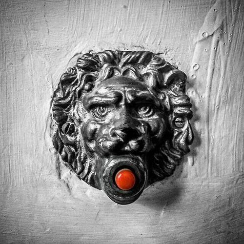 Doorbells Blackandwhitephotography Mono Igersbnw bw_lover monochrome bwoftheday irox_bw ic_bw bw_photooftheday instablackandwhite noiretblanc monochromatic picoftheday lion bnwbutnot bwedition bnw_worldwide bw_awardsbw_crew insta_bw insta_pick_bw bnw_globe bandw rsa_bnw master_pics_bnw all_bnwshots blacknwhite_perfection bwedition simply_noir_blanc