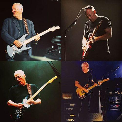 Davidgilmour Music Fenderguitar Fender Pollysamson Likeforlike Reissue Redstrat Recent4recent Photooftheday Picoftheday