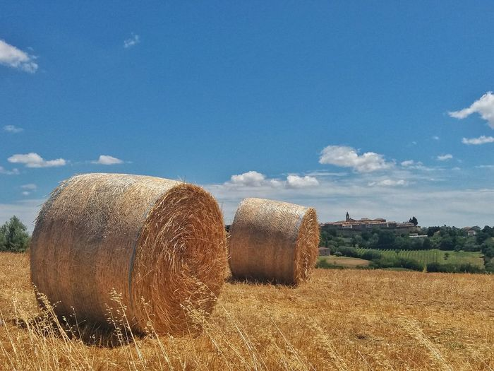 Summer Landscape Nature Nature_collection Nature Photography Landscape_photography Landscape_Collection Italy Marche Region Summertime Panorama View Panorama Summer Paesaggio Landscape_lovers Italia Colors Rural Country Country Road Hills Rural Landscape Country Life Rural Scene Agriculture Hay Bale Field Bale  Harvesting Sky Farmland