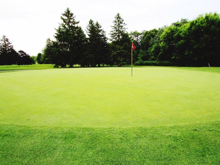 No People Green Color Flag Golf Course Sport Putting Green Day Grass Golf Tree Golf Flag Green - Golf Course Outdoors Sky Golfer Beauty In Nature