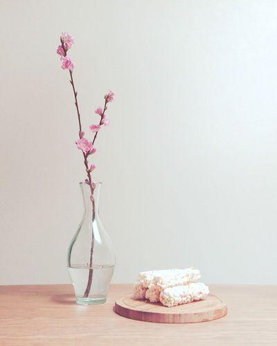 Peachblossom Japan Flower ひなまつり