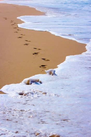 Footsteps Footsteps On The Beach Footprints In The Sand Footprints Portstephens Water Land Beach Sea Sand Beauty In Nature Nature FootPrint Tranquility EyeEmNewHere