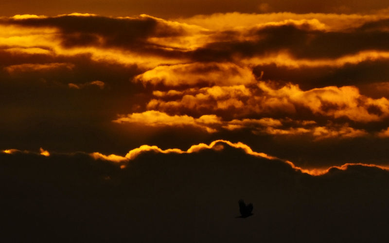 Ashford Kent Kent England Landscape Stunning Sky Sunrise Sunset