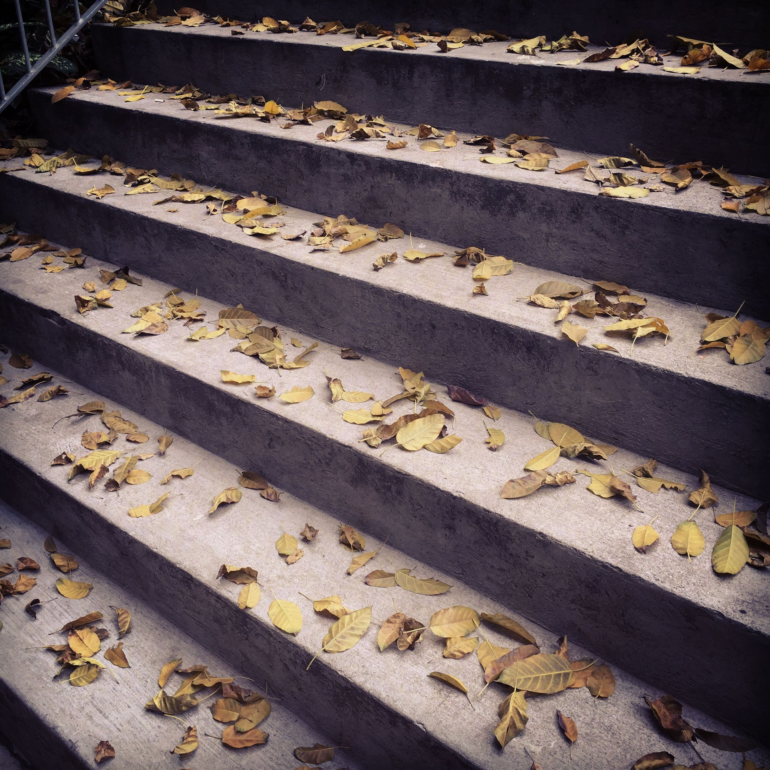 high angle view, railroad track, steps, rail transportation, metal, railing, day, sunlight, outdoors, steps and staircases, yellow, staircase, transportation, no people, pattern, elevated view, in a row, street, shadow, the way forward