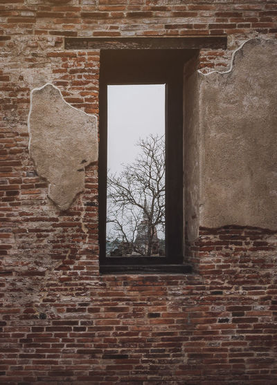 Window Wall Architecture Brick Wall Brick Built Structure Wall - Building Feature No People Tree Day Building Exterior Plant Outdoors Old Bare Tree Nature Sky Damaged History Abandoned Travel Thailand Archaeological Site