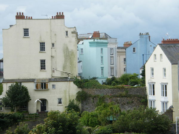 Architecture Building Exterior Built Structure Coloured Houses Day No People Outdoors Pembrokeshire Pembrokeshire Coast Pembrokeshire Coastal Path Seaside Seaside Town Sky Tenby Terraced Garden Tree
