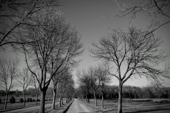 Visual Journal November 2017 Southeast, Nebraska Autumn Camera Work Everyday Lives EyeEm Best Shots Getty Images Photo Essay Visual Journal Always Taking Photos Bare Tree Beauty In Nature Bnw_collection Branch Cold Temperature Day Empty Road Eye For Photography Fujifilm_xseries Landscape Middle America Monochrome Nature No People Non-urban Scene Outdoors Pathways Photo Diary Road S.ramos November 2017 Scenics Schwarzweiß Seasons Sky Small Town Stories Snow Tree Tree Lined Treescollection Winter