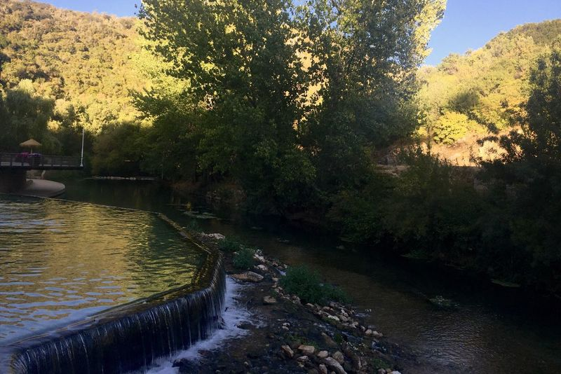 Nature Lover Water Tree Beauty In Nature River Nature Outdoors Growth Day No People Sky (null)Photooftheday Igoftheday Photographing Chiquesnourtemo Igersmood✪ Igotpicturesonmymind