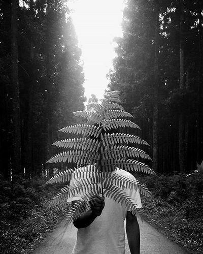 Bwphotography Bw Blackandwhite Black White Mi4i Lumajang Instalumajang Lumajangtravelling Lumajangcity Lumajanghits Mataponsel