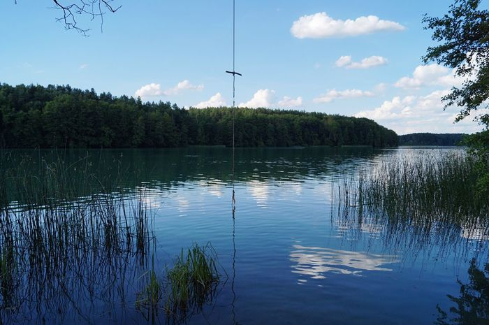 Lake Tree Water Nature Sky Beauty In Nature Cloud - Sky Outdoors Day No People Tranquility Reflection Scenics Tranquil Scene Plant Growth Swinging Jumping Lake View Lakesideview Lakeside Forest