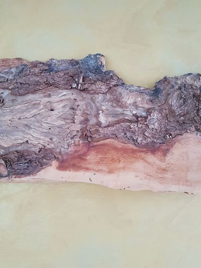 wood of a pinus cembra mounted on a wall Wood Trunk Tree Pinus Cembra Zirbe Zirbenholz Zirbelkiefer Pinustree Baum Baumstamm TreePorn Holz Rinde Holztextur Structure Struktur Heat - Temperature Water Landscape No People Day Mountain Outdoors Nature
