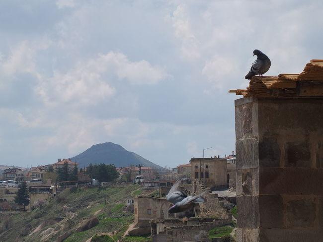 Goreme Urgup Peri Bacalari Masal Sehri Doga Harikasi... Capadokia,Turkey Day Nature Outdoors Uchisar Kalesi ...