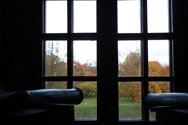 Autumn Autumn Colors Castle Mir Castle Canon Windows