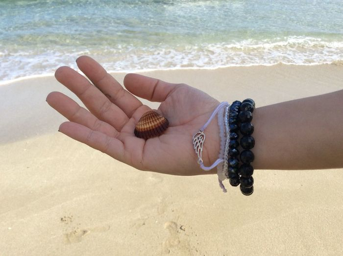 Water Sea Water Horizon Over Water Blue Sea Hand Girl Holding Sea Shell Sea Shells