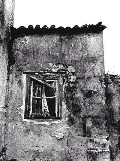 Blackandwhite Urban Decay Pretoebranco Portugaloteuolhar