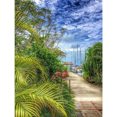 Ilivewhereyouvacation Ig_caribbean_sea Islandlivity Ig_caribbean Iphone5s Grenada Hdriphoneography Hdrspotters Hdr_pics Westindies_pictures Westindies_nature Westindies_colors Wu_caribbean Ig_landscapes