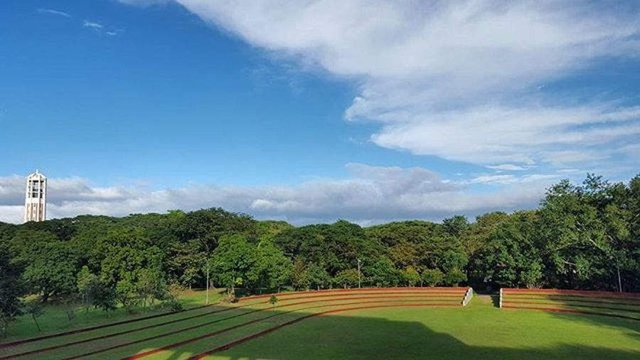 View from the Quezon Hall. Updiliman Nofilter Carilliontower Greens