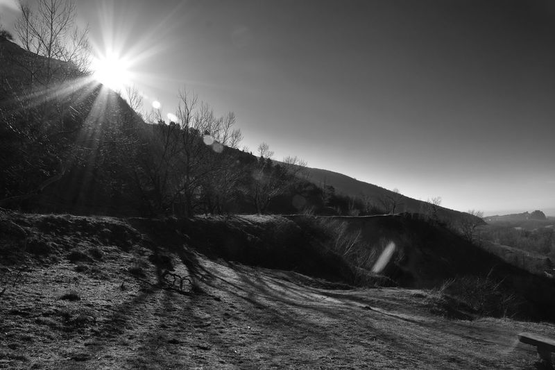 Castle Clear Sky Devin Morning Tree Beauty In Nature Blackandwhite Bratislava Day Devin Castle Forest Hill Landscape Monochrome Moravia Mountain Nature No People Outdoors River Scenics Sky Tranquility