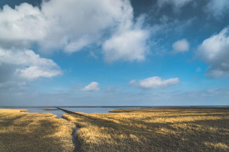 Salt Marsh Beauty In Nature Cloud - Sky Day Environment Field Grass Horizon Horizon Over Land Idyllic Land Landscape Nature No People Non-urban Scene Outdoors Plant Salt Flat Scenics - Nature Sky Tranquil Scene Tranquility
