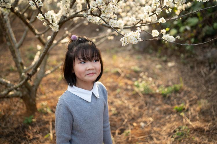 Portrait of cute smiling girl in plum blossoms garden