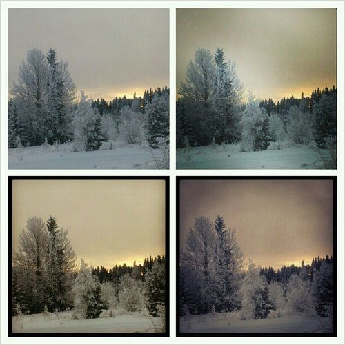 Winter Sweden Samepicture Differentfilters