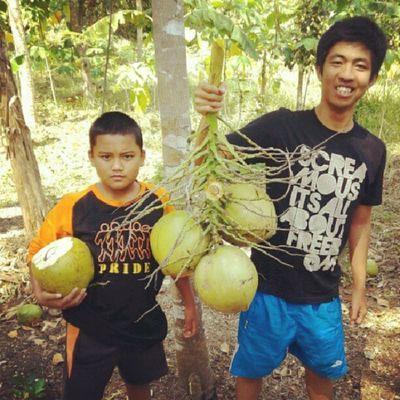 coconut boys Instamudik