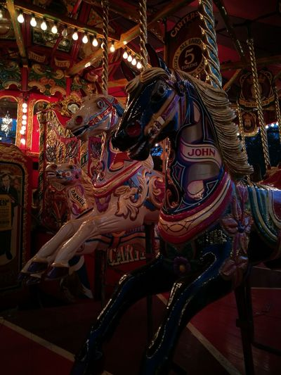 Johnny and Daniel..sorry guys ;)Arts Culture And Entertainment Amusement Park No People Carousel Day Night Smile Amusement Park Ride Spinning Lights EyeEmNewHere Fun Joyride Rollercoaster Nightphotography City Outdoors Vacations John Daniel The Secret Spaces Go Higher