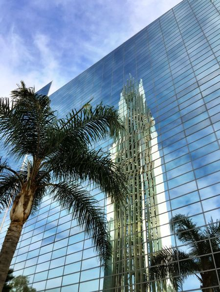 Looking up to the heavens... Architecture Built Structure California Christ Cathedral Church City Crystal Cathedral Garden Grove, CA Glass - Material Glass Reflection Lookingup Low Angle View Modern Palm Tree Reflection SaraLeeMcKinstry Sky Skyscraper SoCal Springtime Tall Building Tower Urban Spring Fever Pivotal Ideas TakeoverContrast The Graphic City California Dreamin