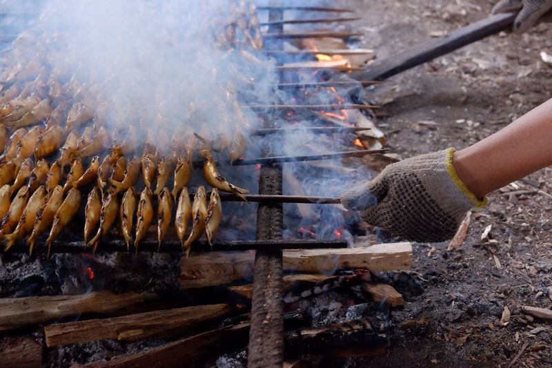 Cropped Image Of Hands Grilling Fish At Barbeque