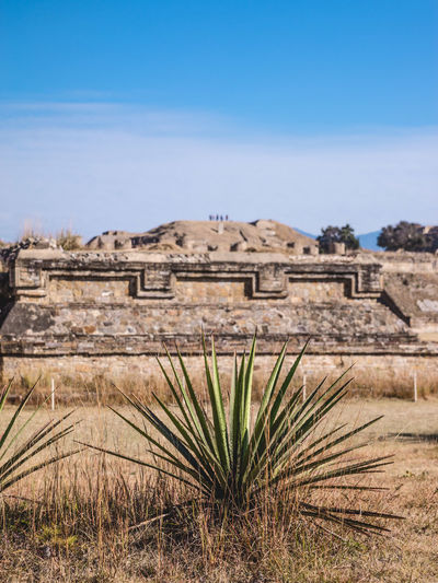Ancient Ancient Ancient Architecture Ancient Civilization Ancient Ruins Archeology Architecture Architecture Art Building Exterior Cosmos Culture Growth History Landscape_photography Mexico Mexico_maravilloso Monte Alban Nature Nature No People Outdoors Prehispanic Pyramid Travel Destinations Neighborhood Map