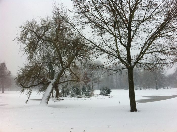 Euromastpark Rotterdam Park