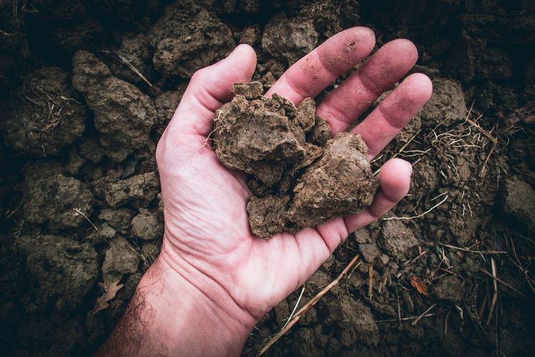 High angle view of person hand holding mud