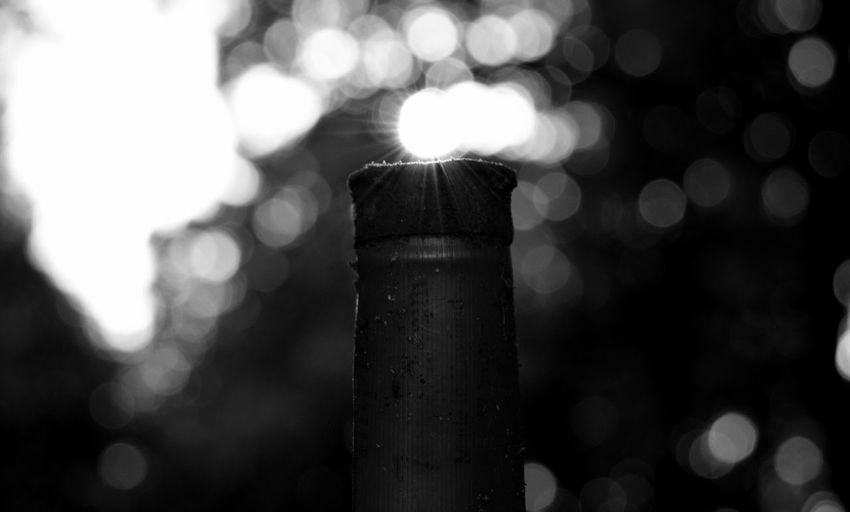 Shotgun Shell Monochrome Hunting Blackandwhite Close-up