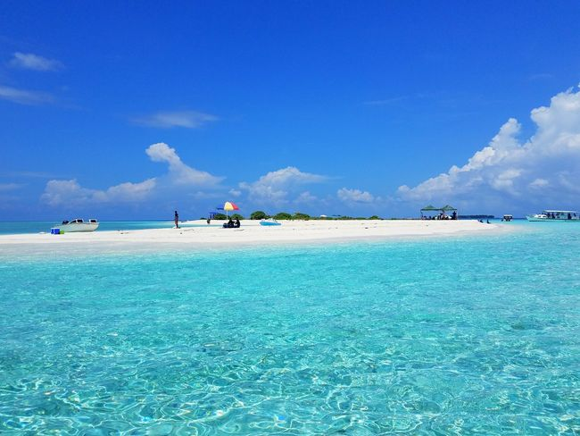 Beautiful crystal clear blue water of a white sandbank near Maldives Blue Crystal Maldives Visit Tour Trip Excursion Beach Sea Blue Sand Water Sky Sunny Tropical Climate Nature Outdoors Cloud - Sky Summer Vacations Beauty In Nature Day Scenics Tree