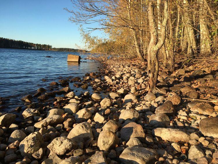 Clear Sky Sky Lake Trees Nature Stone Finland берег озеро деревья небо чистое небо камни Природа Финляндия No People Day