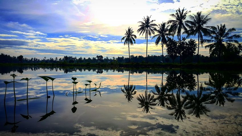 K n K Reflection Water Lake Tree Sky Nature Outdoors Beauty In Nature Sunset Tranquility Scenics Reflection Lake No People Day Extreme Weather Kangkung Kelapa Agushariantophotography Lombok-Indonesia