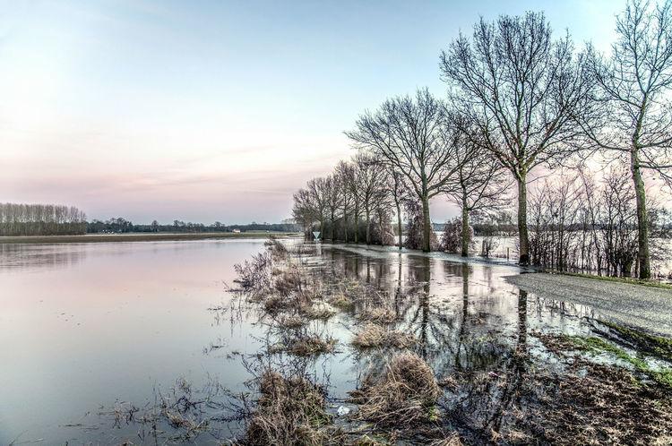 Hoogwater Maas Bij Well 2012
