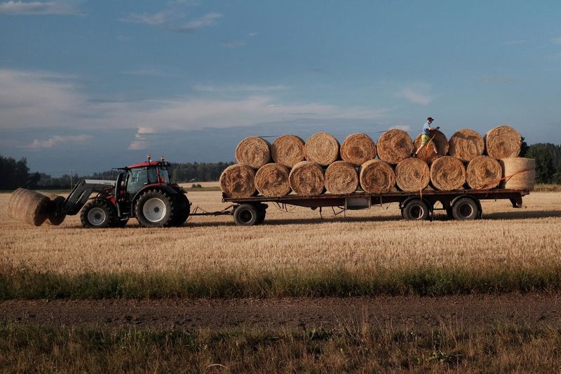 Getting in the harvest Transportation Mode Of Transportation Land Vehicle Agriculture Agricultural Machinery Farm Rural Scene Tractor Nature Landscape Sky Stack Agricultural Equipment Harvesting Field Land Plant Day Abundance People