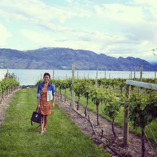 Favourite Vineyard in Kelowna . Loving everything about this place.