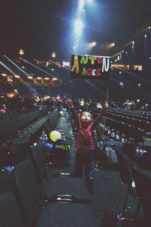 Mellokung Melodifestivalen Anton Edwall  Fans