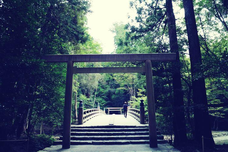 Grand Shrine Of Ise Mie Japan Naiku Approach To Shrine Worshipping Holiday TORII Bridge Nature