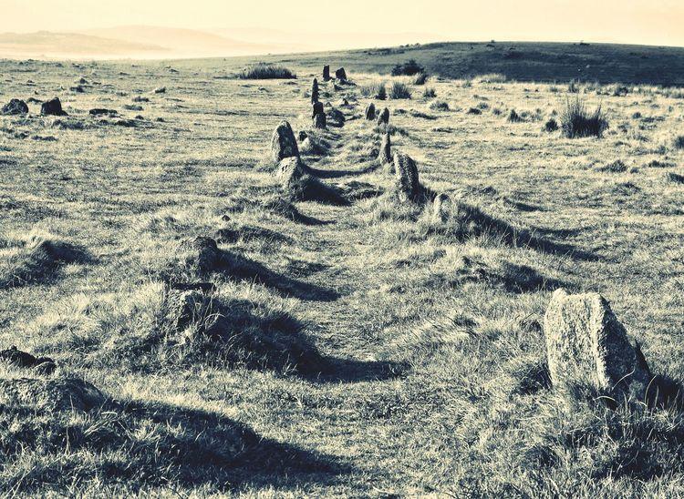 Track Path Avenue Bronze Age Prehistoric Granite Rocks Stone Stoneage Shadow Sunlight Outdoors Day No People Rugged Moors Dartmoor Blackandwhite Dartmoor National Park Devon