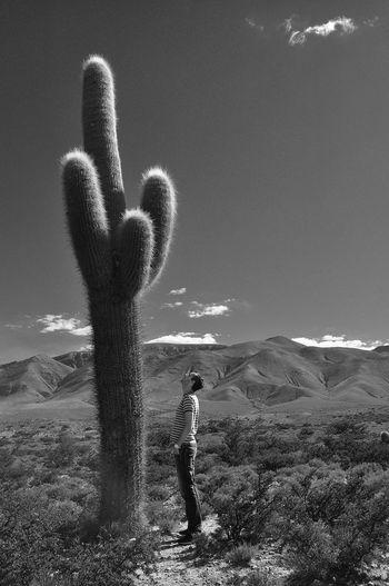 Man standing by saguaro cactus at desert against sky