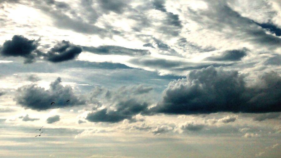 Skylovers Enjoying The Sun Fresh Air Rightplacerighttime Beautiflesky
