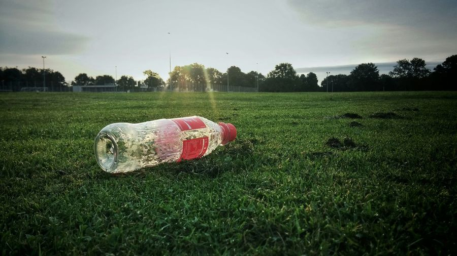 after the match...Morning Sun and Plastic Pollution at our lokal Sportsground Green Grass Sport Smartphonephotography Urban Landscape Bremen